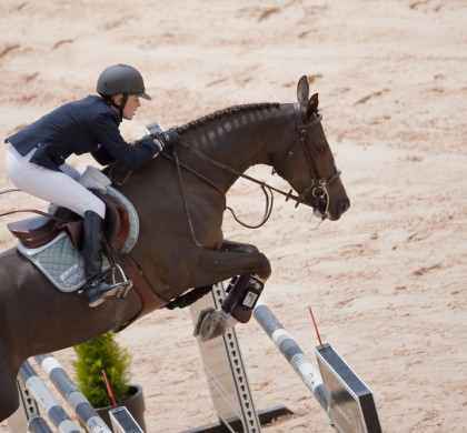 Exercising show jumping horses for longer periods could potentially improve performance
