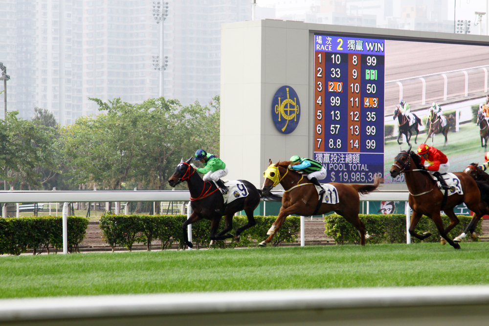 1600m race time may be a moderate predictor of offspring success in Hong Kong